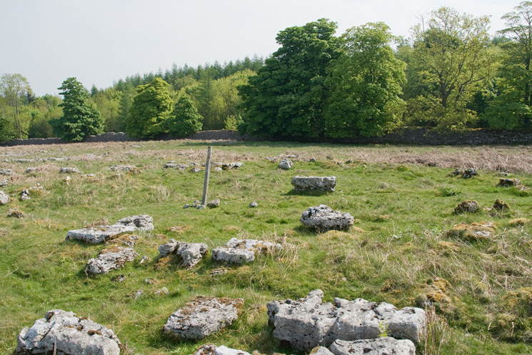 Stone Circle on Knipescar Common