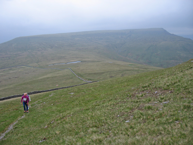 Looking back to Wild Boar Fell from Swarth Fell