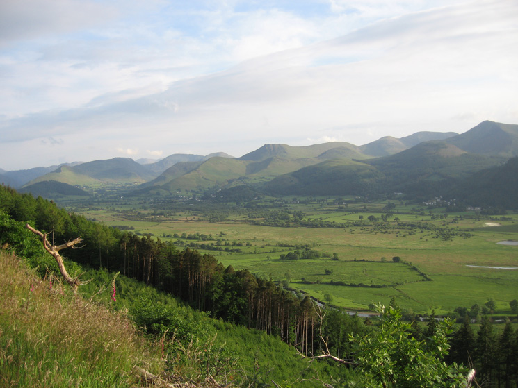The north western fells from Dodd
