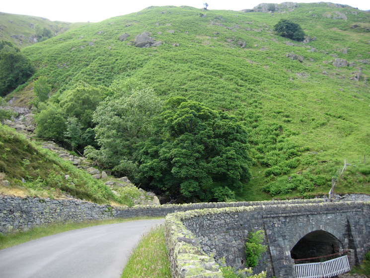 The bottom part of Branstree's north ridge