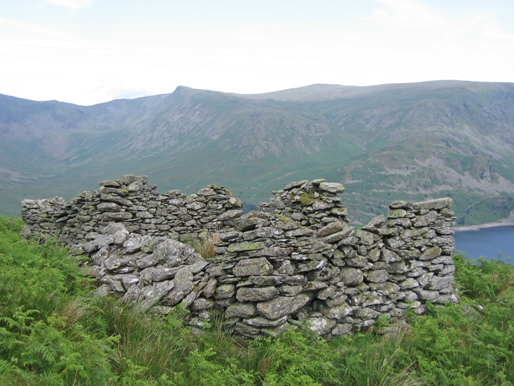 One of the two ruined buildings on Branstree's north ridge with Kidsty Pike on the skyline