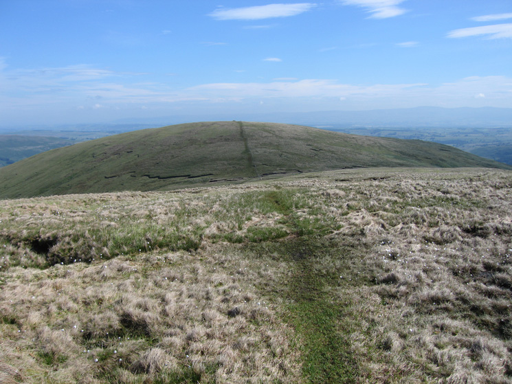 Selside Pike from High Howes