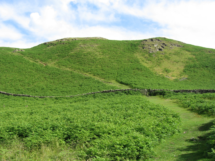 The path up High Rigg behind the Carlisle Diocesan Youth Centre