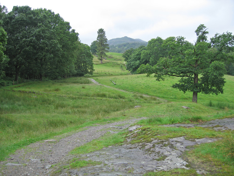 Lingmoor Fell comes into view