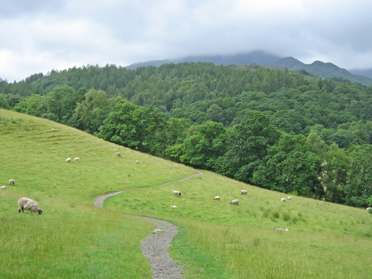 Heading for Colwith with Wetherlam in cloud