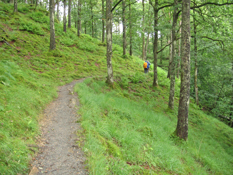 The path to Colwith Force