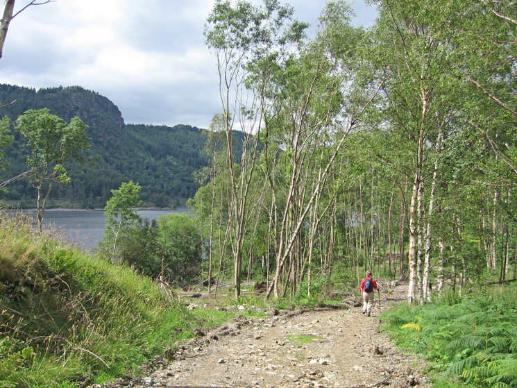 Heading through the woodland with Raven Crag on the far side of Thirlmere