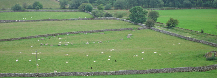 Looking down on Gamelands Stone Circle