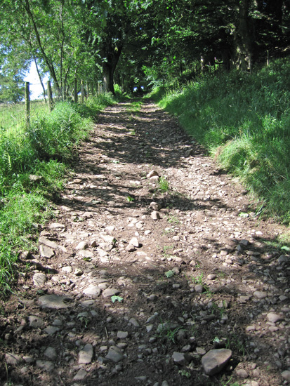 The track to Racy Cottage which I followed for about 300 yards