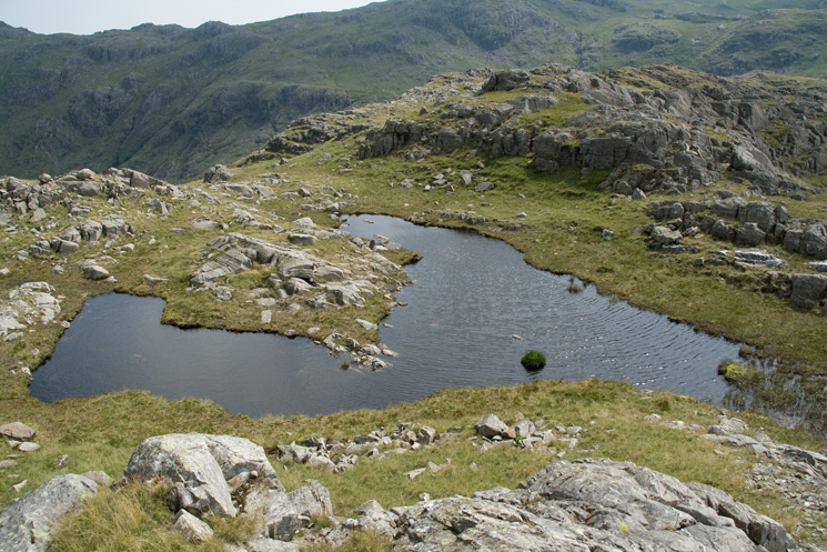 This distinctively shaped tarn is really useful for finding Seathwaite Fell's summit in poor weather