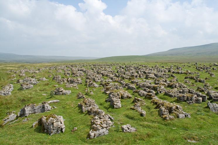 Limestone, High Cup Plain