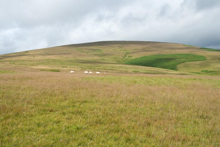 Loadpot Hill