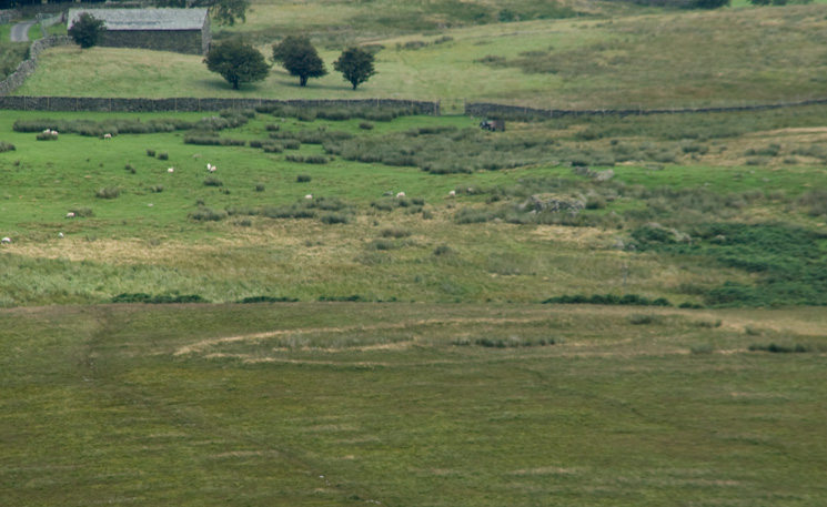 Zooming in on Towtop Kirk, a druid's circle or an ancient settlement / enclosure