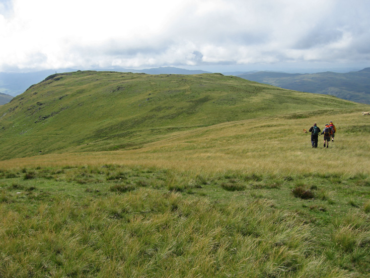 Heading for White Pike
