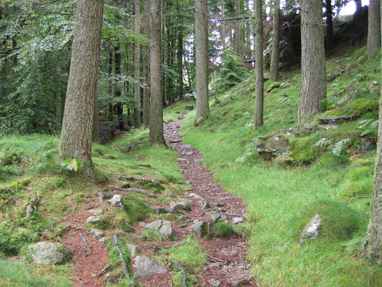 The path up to Harrop Tarn, the steeper bit already done