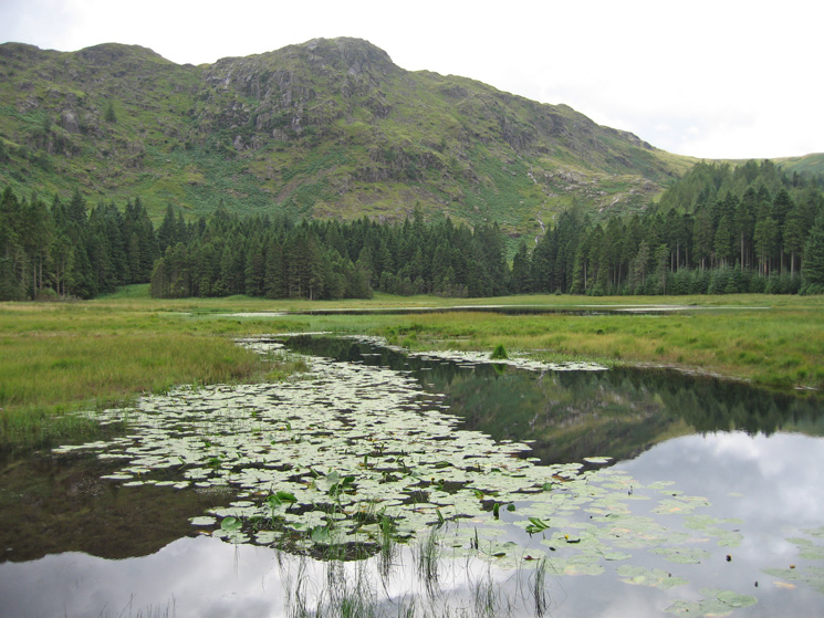 Harrop Tarn and Tarn Crags