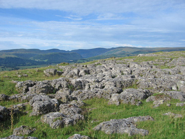 Limestone pavement on the top of Knipescar Common