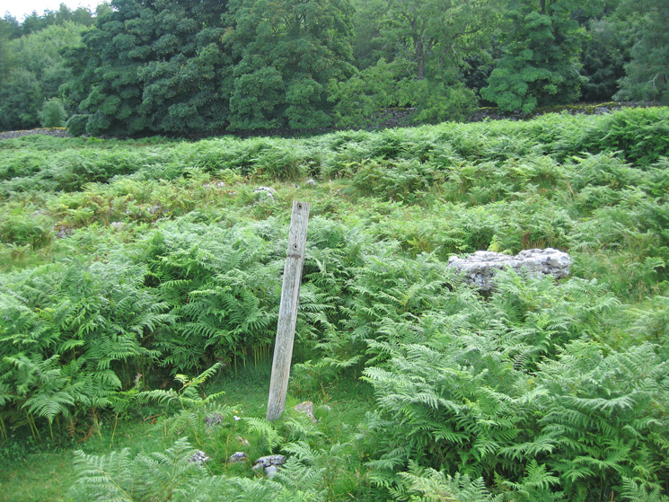 The Stone Circle on Knipescar Common would be difficult to spot in the bracken without this post