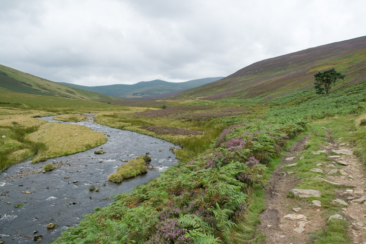 River Caldew as the track which leads to Skiddaw House starts to deteriorate