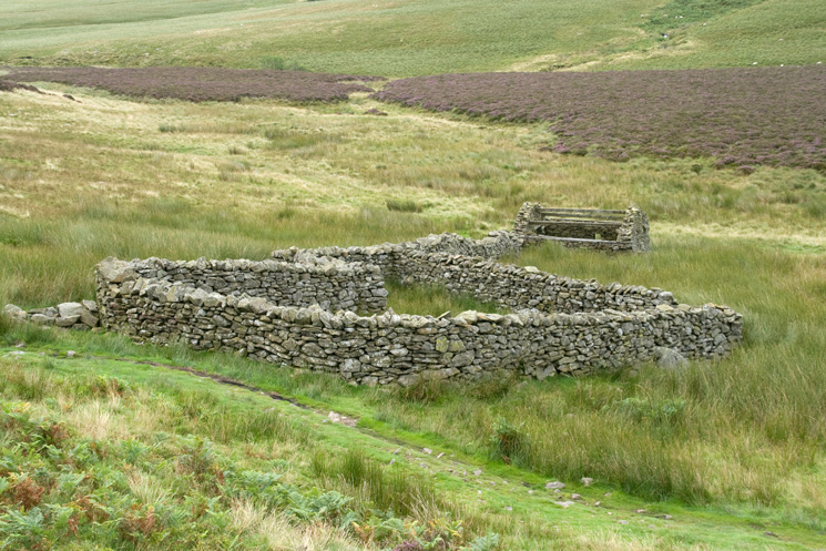 Sheepfold and ruined buiding beside the path at NY308310