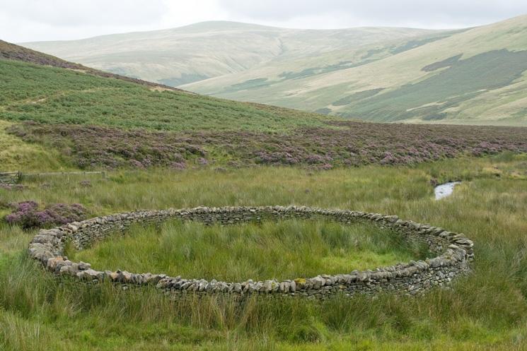 Circular sheepfold next to Wiley Gill