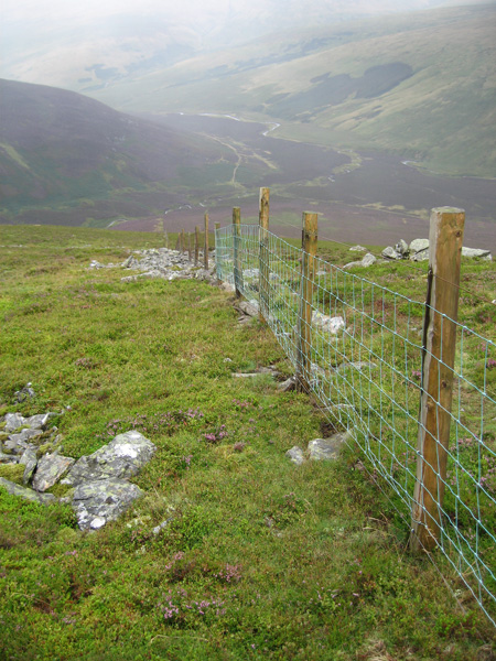 Looking back down from near Great Calva southern cairn and the fence corner
