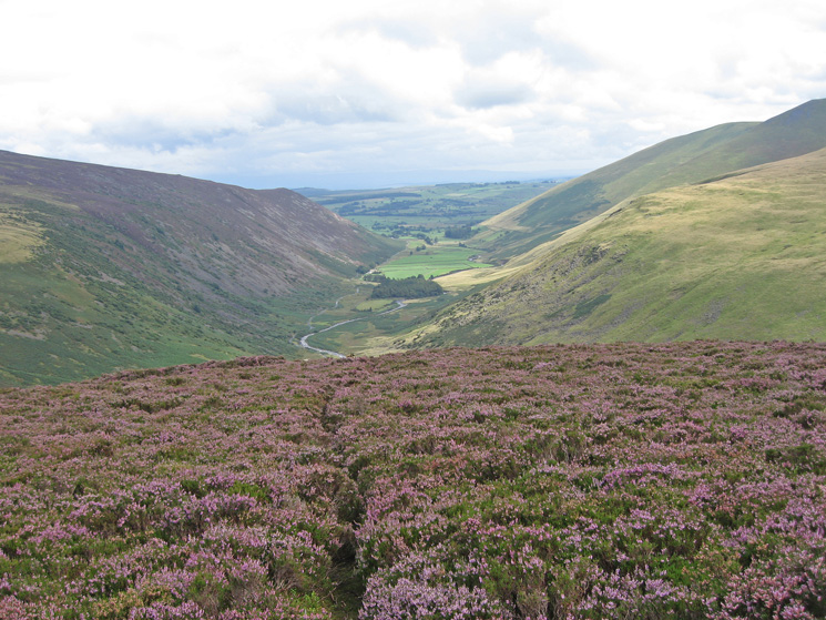 Looking towards Swineside Valley as I descend from Coomb Height