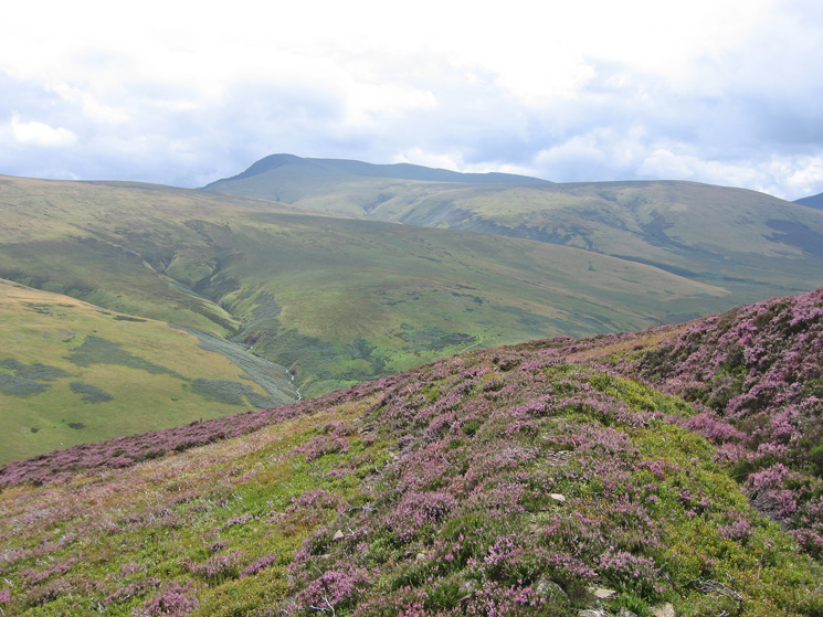 Blencathra from the descent off Coomb Height