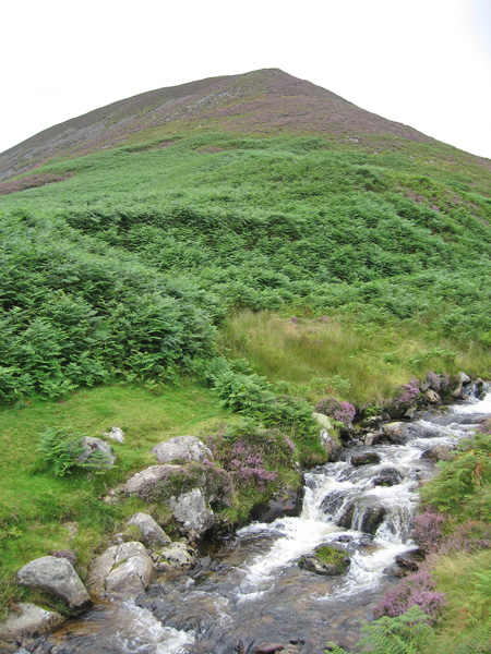 Looking back up my descent route off Coomb Height from next to Grainsgill Beck