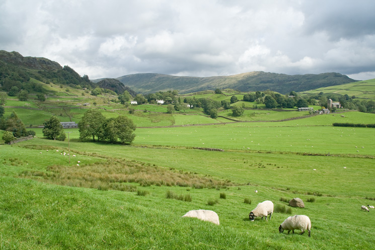 Looking across Kentmere to Kentmere Pike and Shipman Knotts