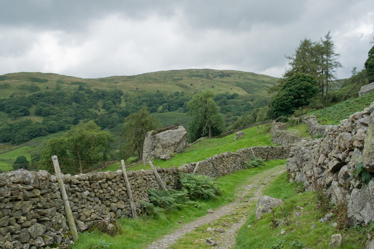 Badger Rock and Sallows from the Garburn Pass track