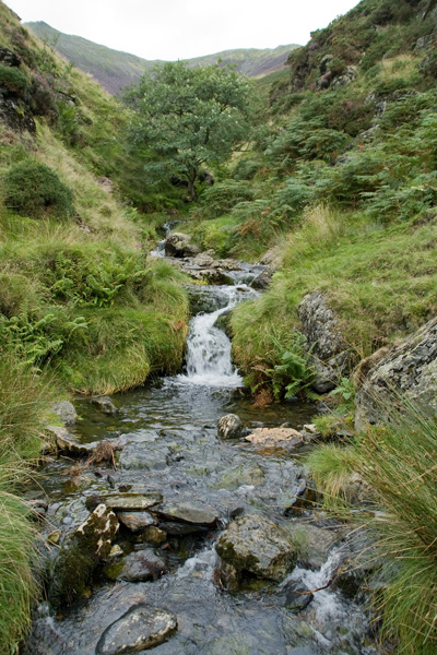 Scaley Beck between Doddick Fell and Scales Fell