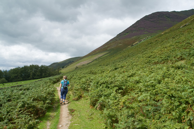 On the path below Hall's Fell