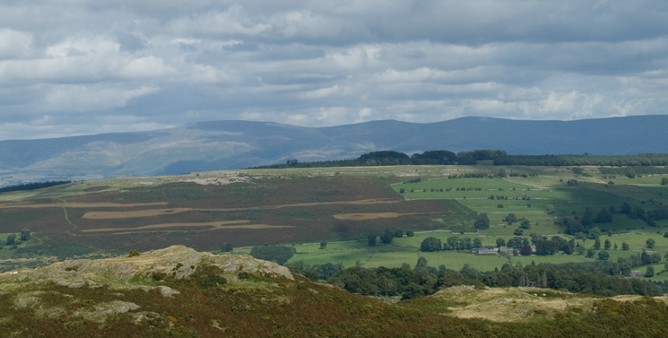 Looking over Knipescar Common to the North Pennines (Cross Fell, Little Dun Fell and Great Dun Fell)