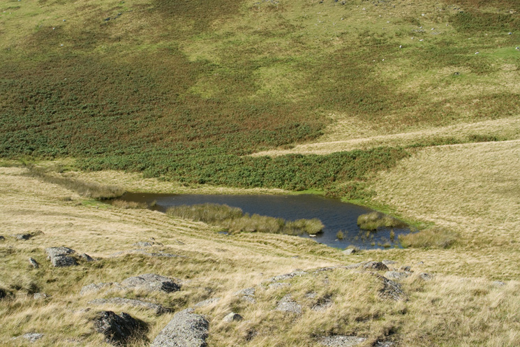 Four Stones Tarn from Four Stones Hill's summit