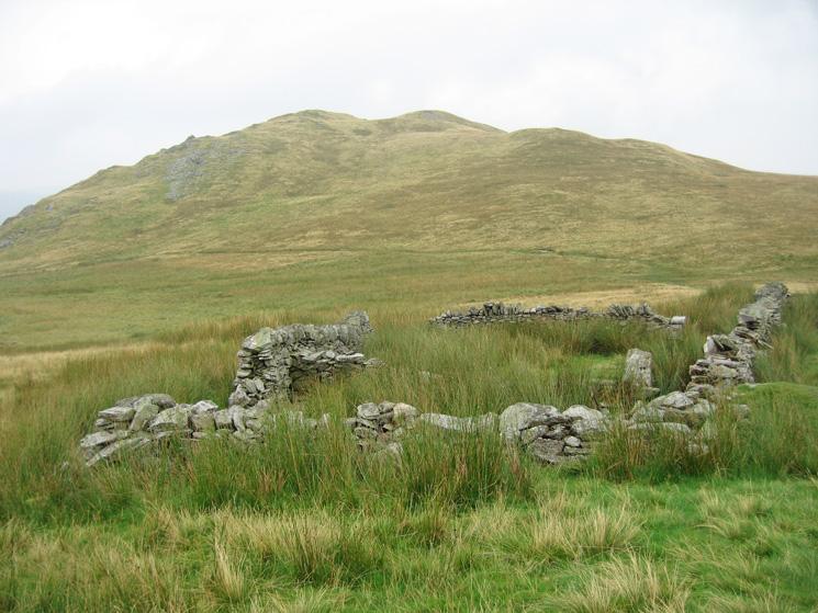High Dodd from Low Moss sheepfold