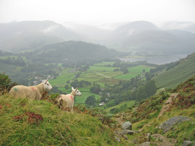 The wooded Keldas and the head of Ullswater