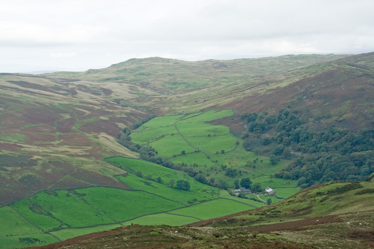 Brunt Knott on the other side of Longsleddale from Todd Fell's summit