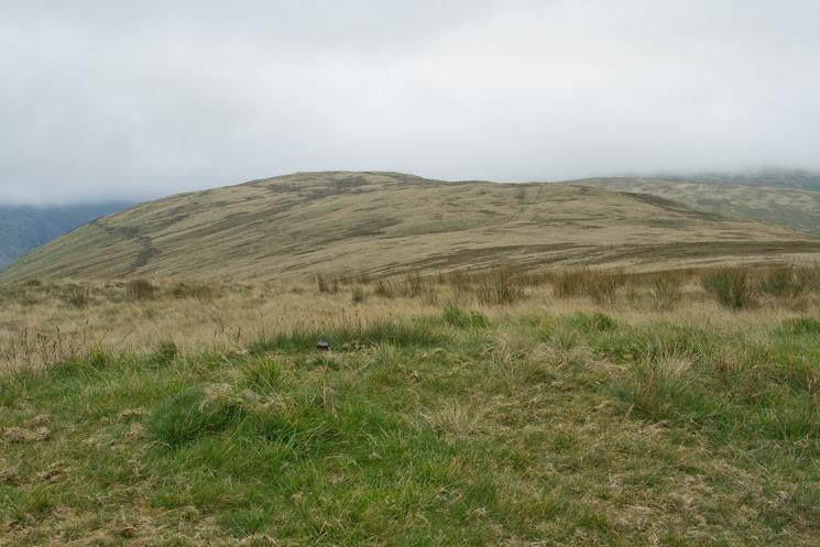 Capplebarrow's summit looking north towards the 555m nameless top