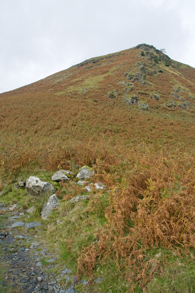 My line of ascent to the left of the rocks (AW Bowscale Fell 5 - Route 2)
