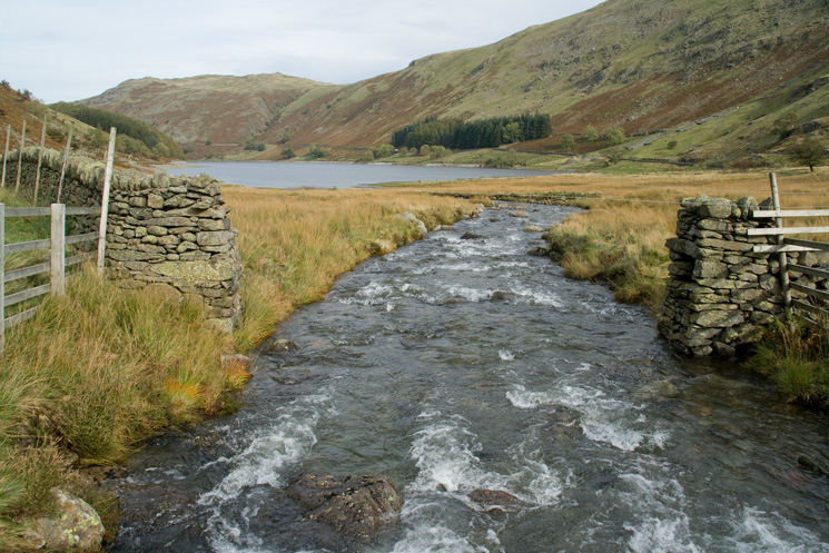 Mardale Beck flowing into Haweswater
