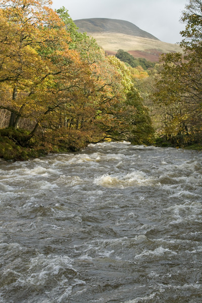 Looking back upstream towards Blease Fell