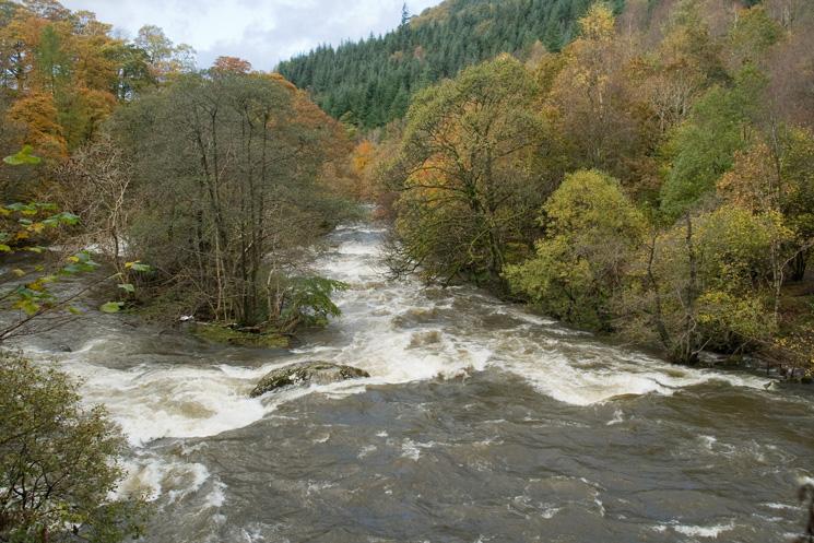 River Greta in full flood