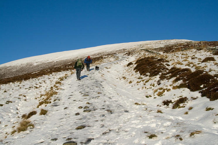 The path up Jenkin Hill was like an ice rink this morning, these two were wearing crampons