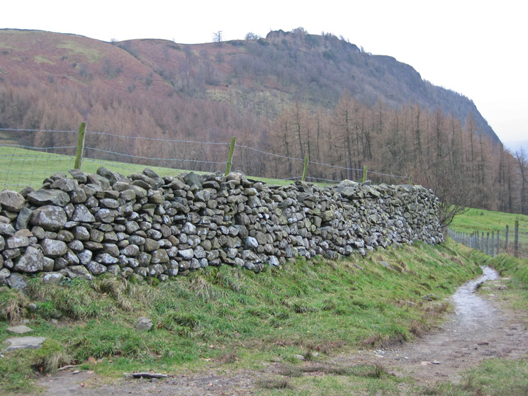 Walla Crag. Instead of carrying on to Rakefoot I headed along this path and then steeply up through Great Wood