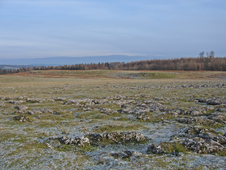 Knipescar Common with Cross Fell (North Pennines) in the distance