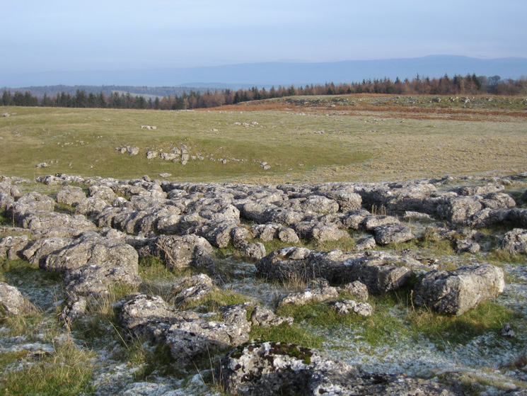 Knipescar Common with Cross Fell (North Pennines) in the distance, right