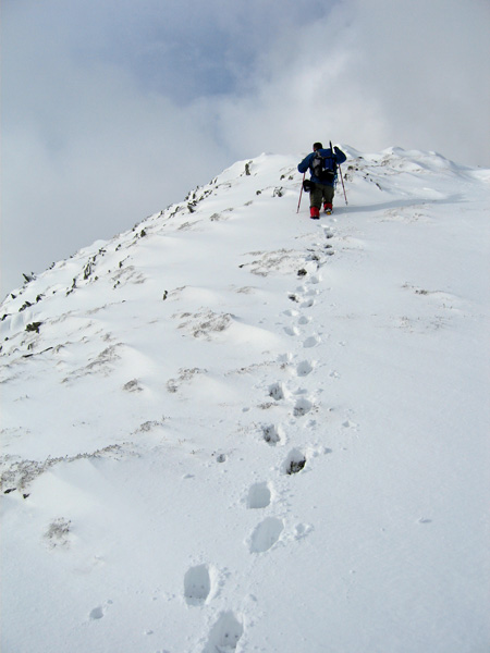 Approaching Gavel Pike's summit