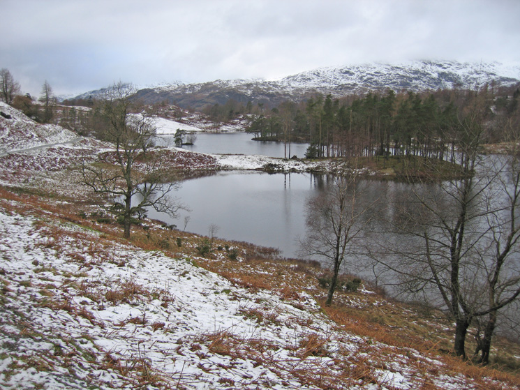 Tarn Hows with Wetherlam beyond