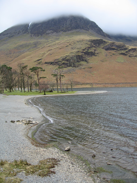 High Crag and the Buttermere Pines